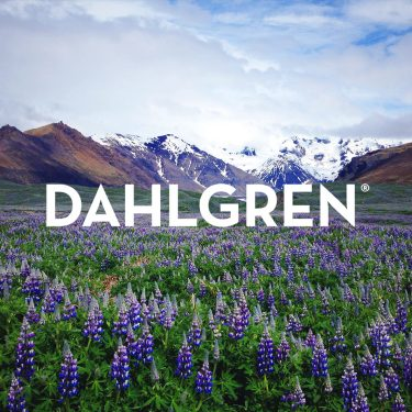 Dahlgren Premium Socks